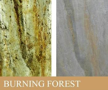TransLucent Burning Forest